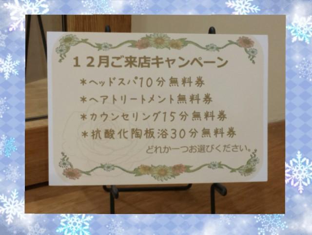 2015-12-03_13.25.14